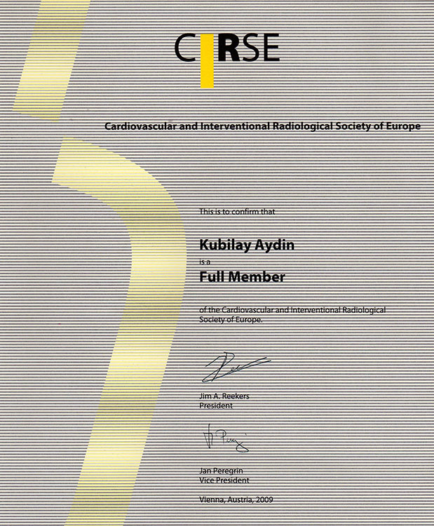 Cardivasculer and Interventional Radiological Society of Europe